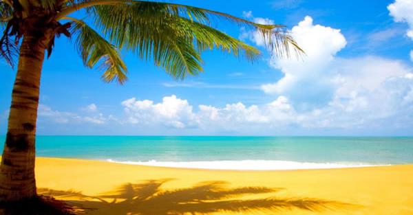 A la plage avec EAVS !