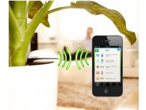 06 koubachi plante 300x225 10 objets connectés pour une maison intelligente