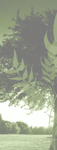 lp_green_mid_treeside_200x