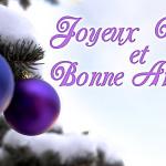 Le Groupe EAVS vous souhaite de Joyeuses Fêtes !