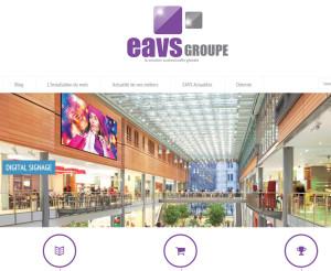 EAVS Corporate