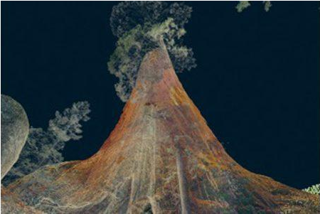 art-data-and-tech-collide-for-treehugger-vr-experience-av-magazine-pro-av-news-analysis-and-comment-from-europes-leading-audio-visual-title