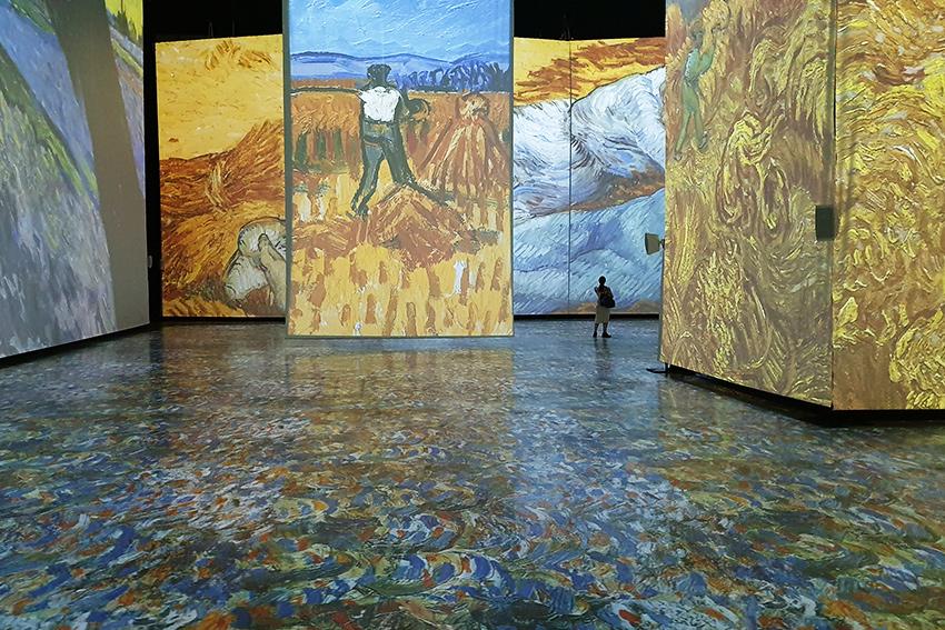 L'installation du mois : une immersion totale dans l'œuvre de Van Gogh